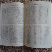 DSC09290